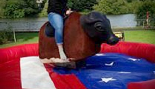 Rodeo bull Bucking bronco hire Donegal